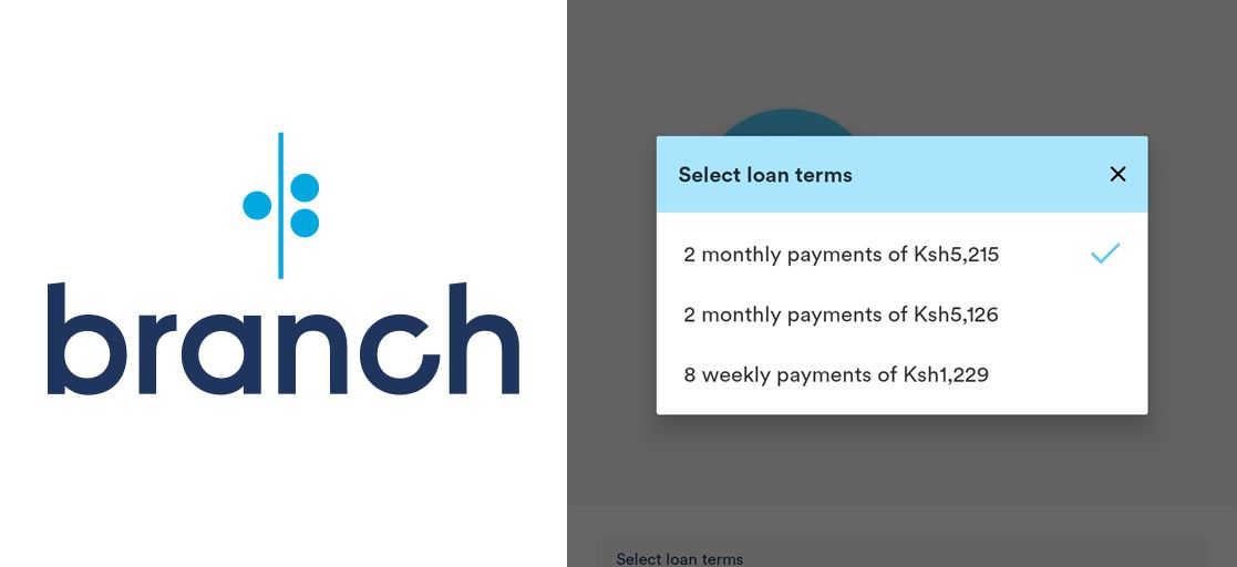 Branch Loan repayment periods